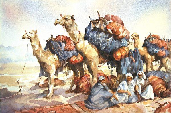 Camel-Stop