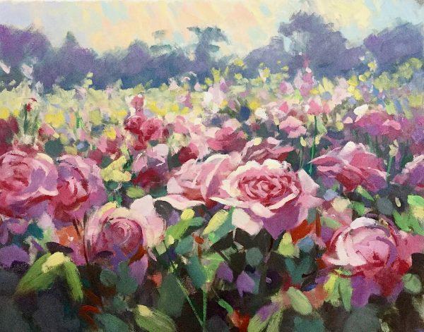 Rose Gardens at Kew