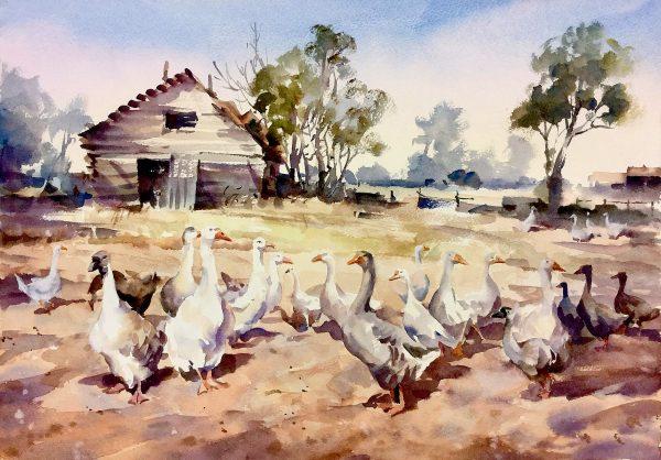 Goose Fields watercolour by trevor Waugh