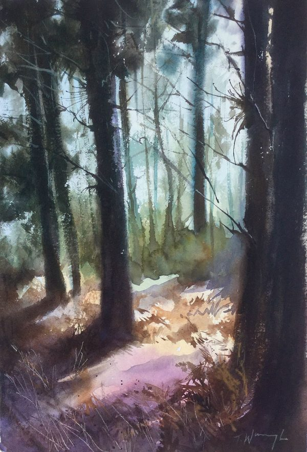 woodland painting Trevor Waugh