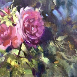 Princess Anne Roses at Kew