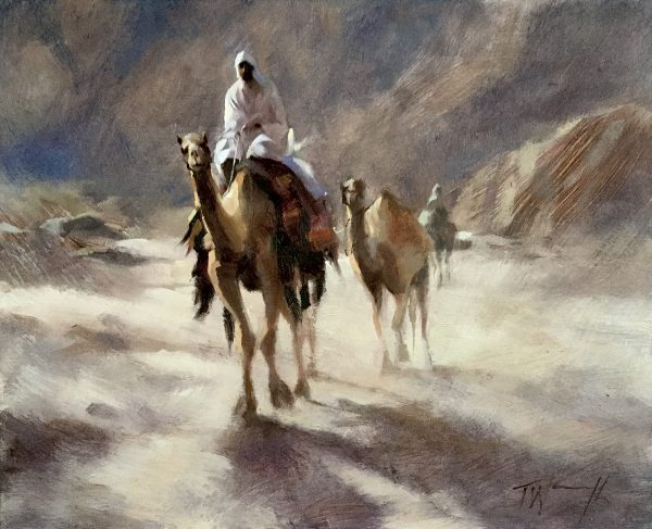 Camels in the Canyon