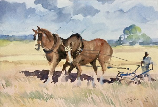 Two Shires Ploughing
